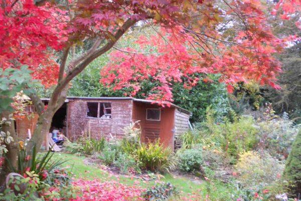 Mature Garden Gallery