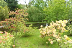 Mature Gardens Gallery